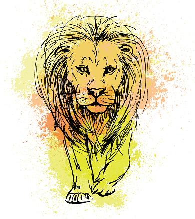 Bir Aslan Onden Gorunum Renkli Sulu Boya Lekeleri Bir Arka Plan