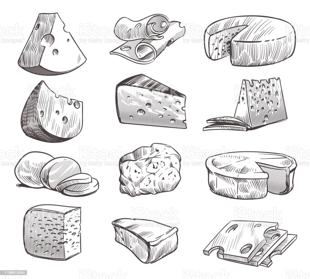 Sketch cheese. Various types of cheeses. Fresh cheddar, feta and parmesan dairy snack. Hand drawn retro vector isolated set - Векторная графика Белый роялти-фри