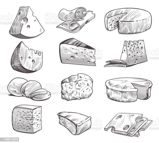Sketch Cheese Various Types Of Cheeses Fresh Cheddar Feta And Parmesan Dairy Snack Hand Drawn Retro Vector Isolated Set — стоковая векторная графика и другие изображения на тему Белый