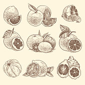 Citrus peels, orange, lemon and grapefruit for vitamin c and exfoliation