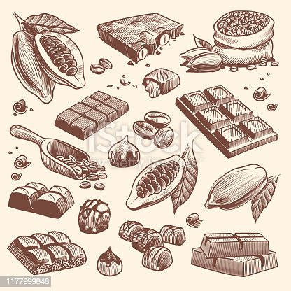 Sketch cocoa and chocolate. Cacao and coffee seeds and chocolate bars and candies. Hand drawn sweets isolated vector traditional vintage peel candy plant set