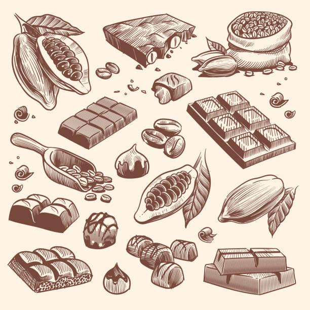 skizze kakao und schokolade. kakao- und kaffeesamen sowie schokoriegel und bonbons. hand gezeichnete süßigkeiten isoliert vektor-set - schokolade stock-grafiken, -clipart, -cartoons und -symbole