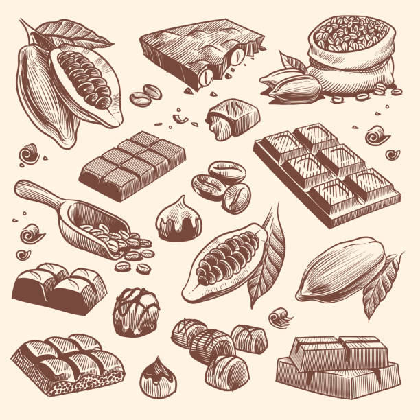illustrazioni stock, clip art, cartoni animati e icone di tendenza di sketch cocoa and chocolate. cacao and coffee seeds and chocolate bars and candies. hand drawn sweets isolated vector set - cioccolata