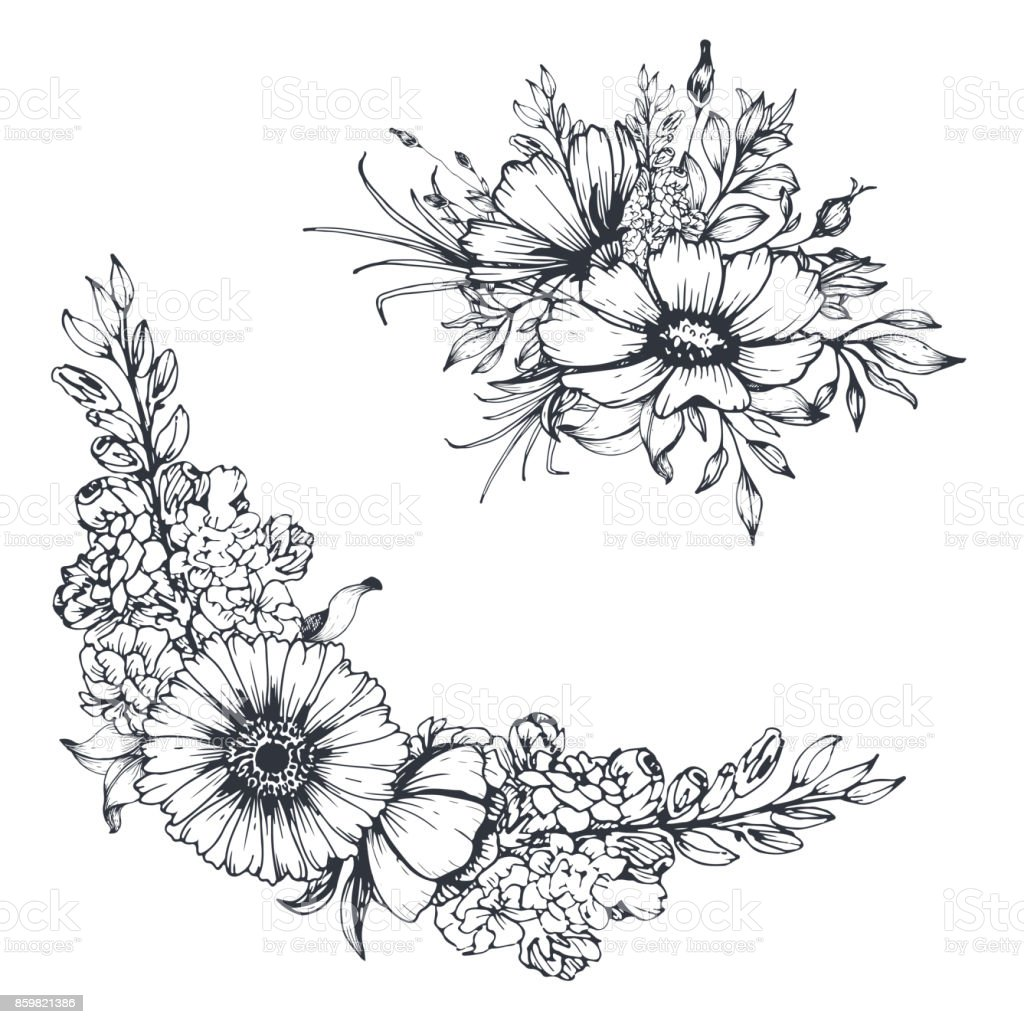 Sketch Floral Bouquet And Border Stock Vector Art More Images Of