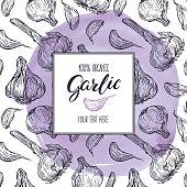 sketch frame of Garlic