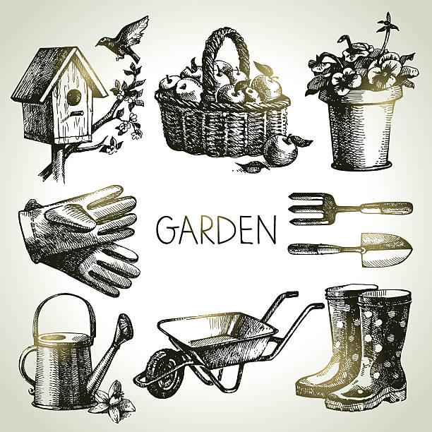 ilustrações de stock, clip art, desenhos animados e ícones de esboço conjunto de jardinagem. mão desenhada elementos de design - picking fruit