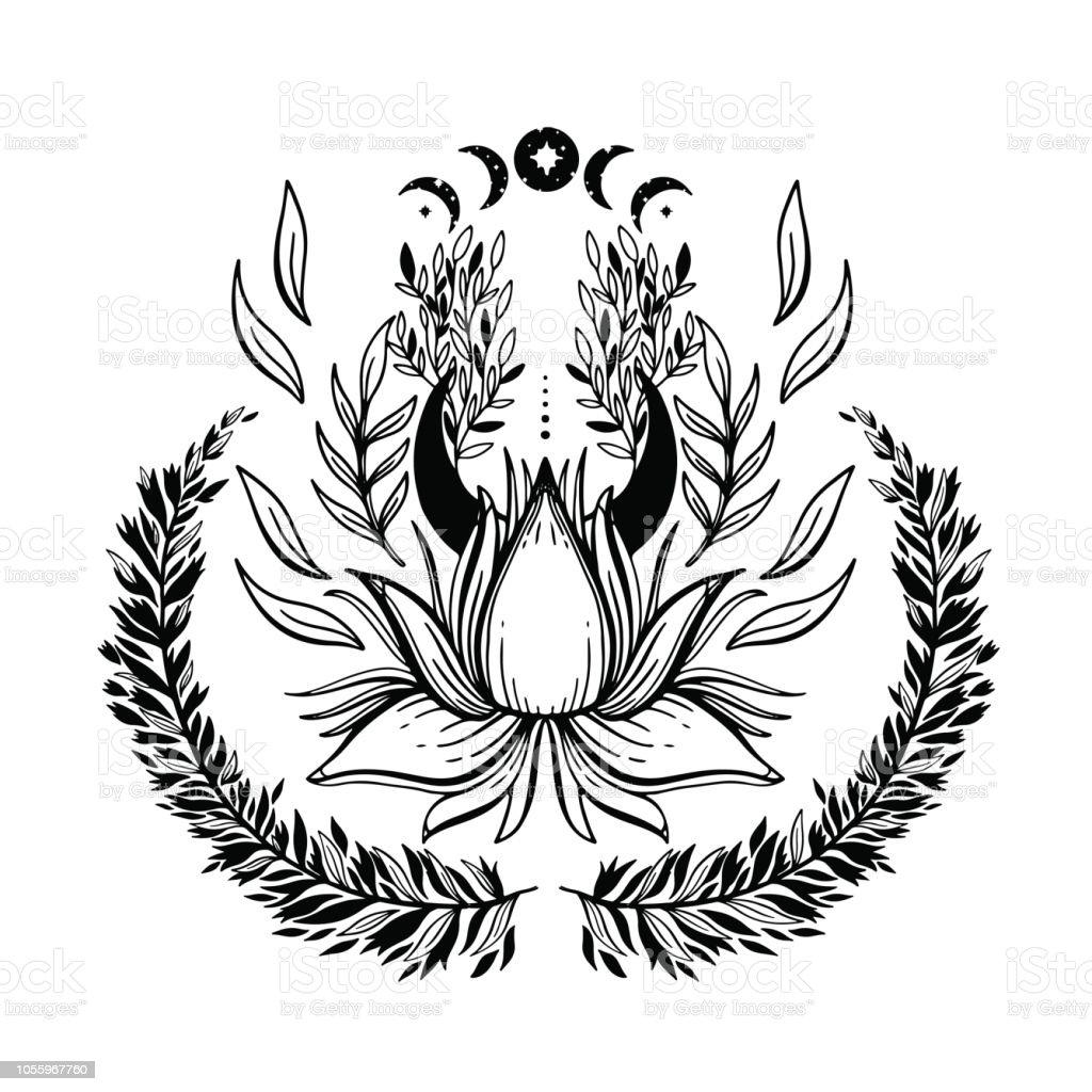 Ilustración De Bosquejo Del Lotus De Hermosa Ilustración Gráfica Con