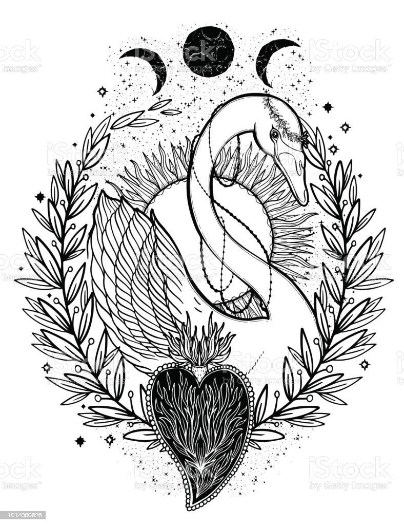 Dessin Graphique Illustration Beau Cygne Soleil Fairytale Caractere