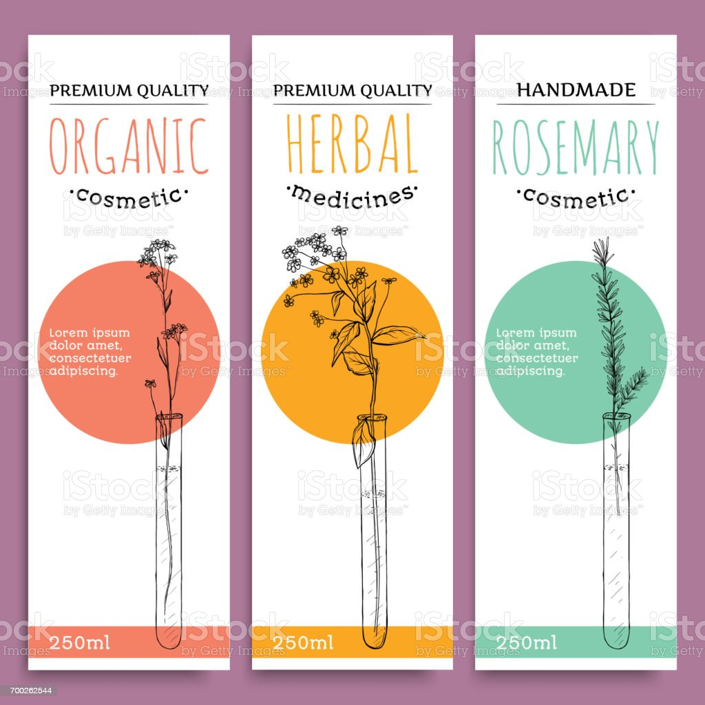 Sketch Herbal Vertical Banners With Organic Herbs Rosemary Valuable For  Human Health Vector Illustration Stock Vector Art & More Images of Anise