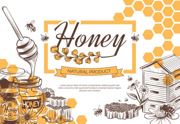 skizze honig hintergrund. hand gezeichnet süße dessert natürliche bio-wabe, bienenwachs und bienen, imkerei banner, poster vektor-design - bienenwachs stock-grafiken, -clipart, -cartoons und -symbole