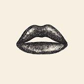 Hand drawn illustration of human lips.