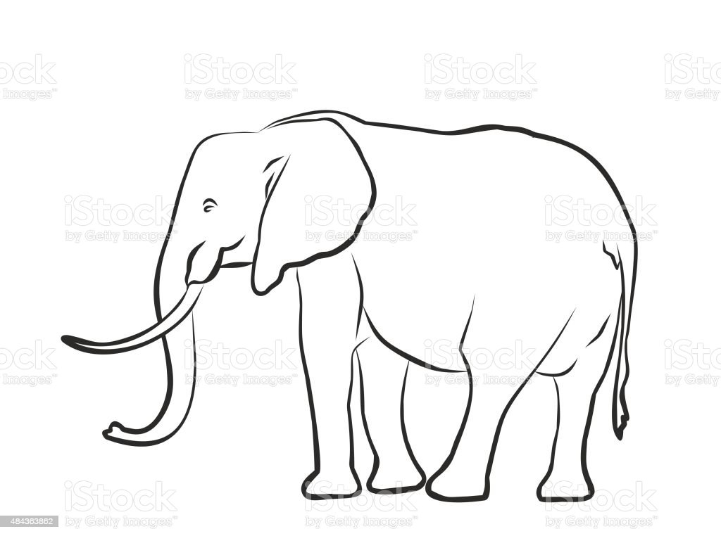 Skizze Eines Großen Elephant Stock Vektor Art und mehr Bilder von ...