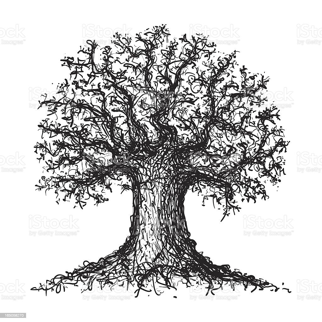 Sketch of a tree royalty-free stock vector art