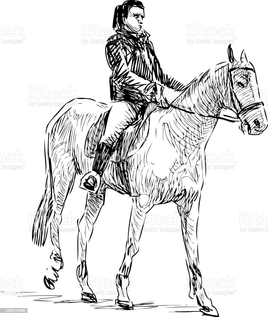 Sketch Of A Woman Riding A Horse Stock Illustration Download Image Now Istock