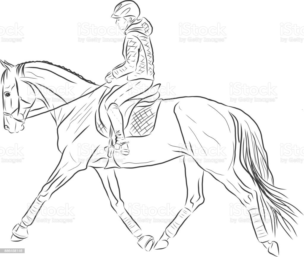 Sketch Of A Woman Riding On A Horse Stock Illustration Download Image Now Istock