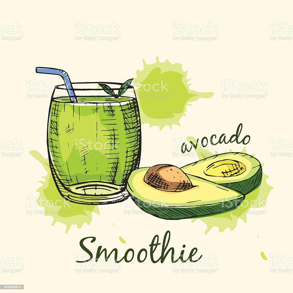 Sketch of avocado smoothie in glass. Vector illustration. vector art illustration