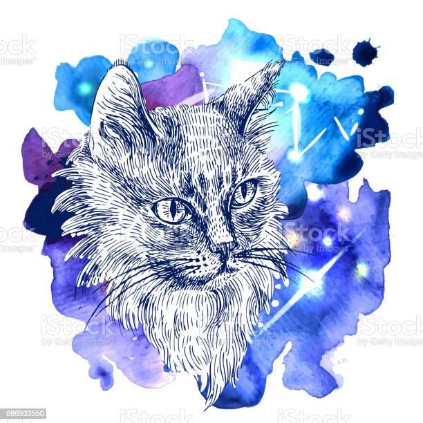 Sketch of cat vector id586933550?b=1&k=6&m=586933550&s=612x612&h=j rwn1ouuwczy1zbrvp0kn5eik3yt6knix jtdmxqou=