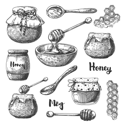Sketch of different jars of honey, spoons and other items. Honey set. Vector illustration