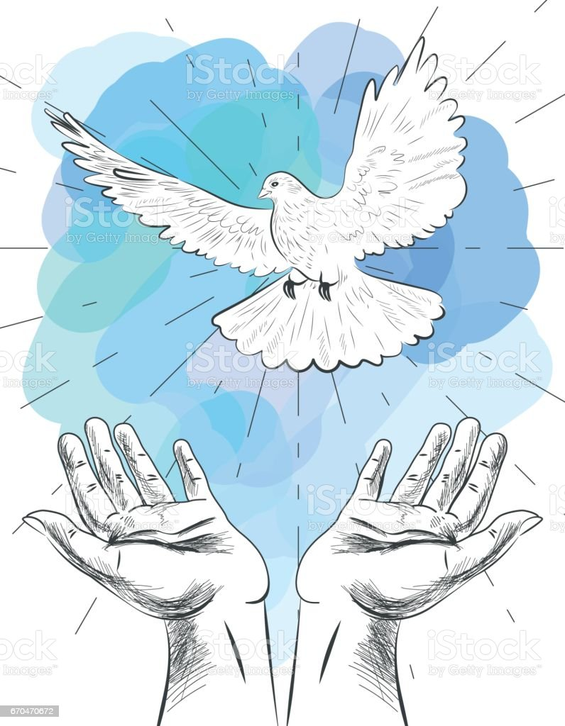 Sketch Of Hands Let Go Dove Of The World Symbol Of Peace
