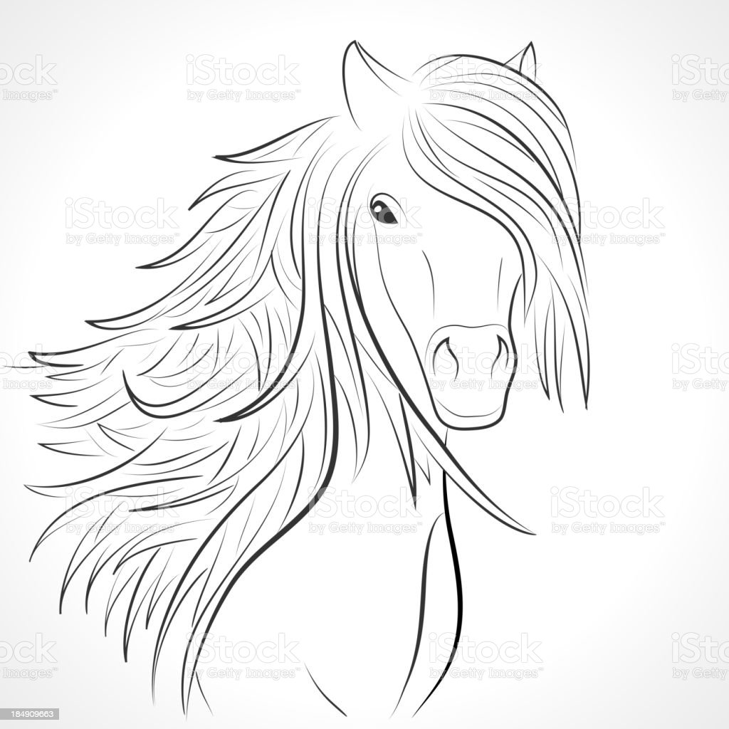 Sketch of horse head with flying mane on white. Vector vector art illustration