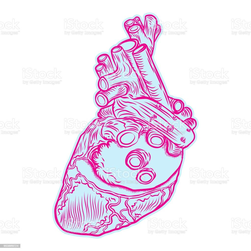 Skizze Des Menschlichen Herzens Handgezeichnete Anatomische Boho ...
