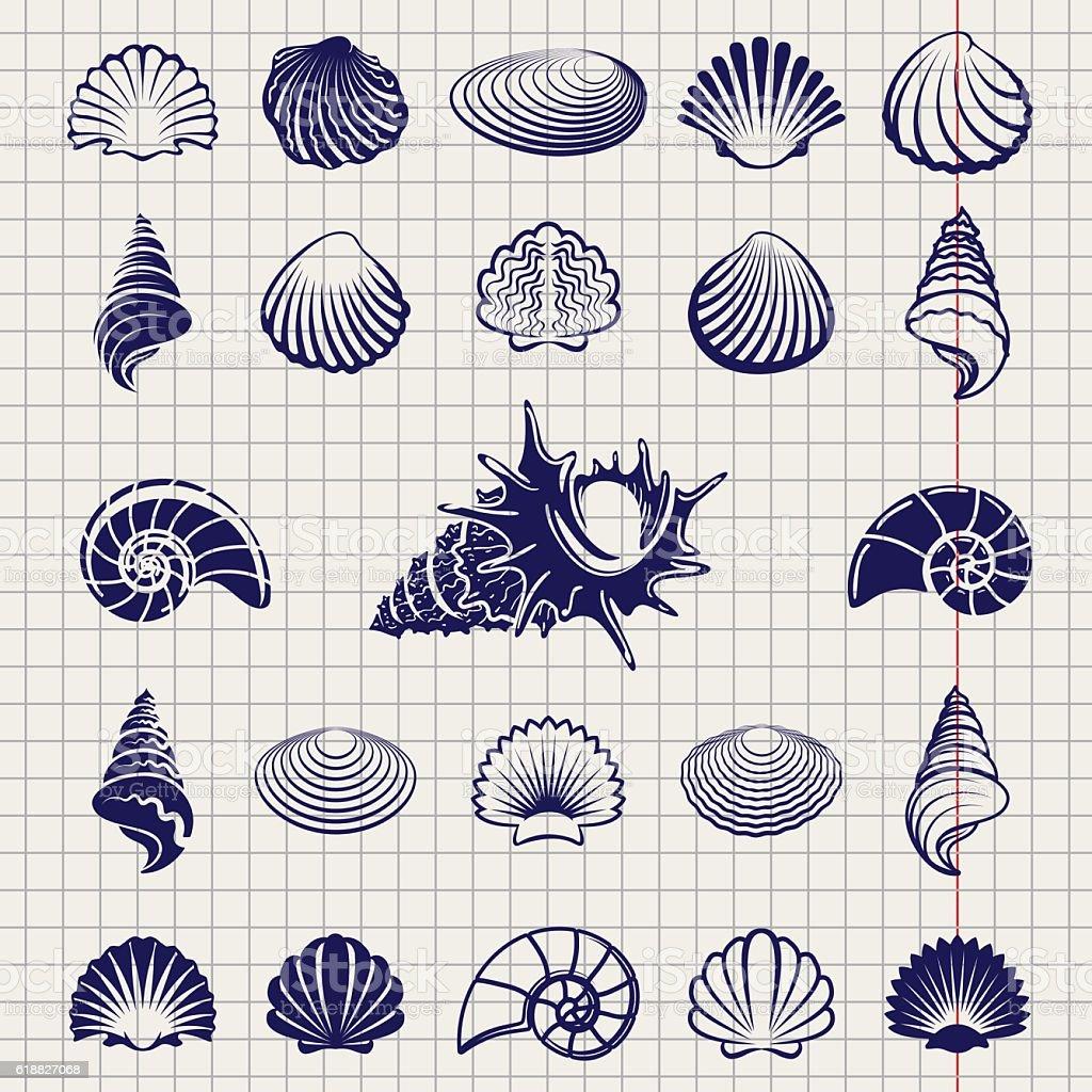 Sketch of sea shells vector art illustration
