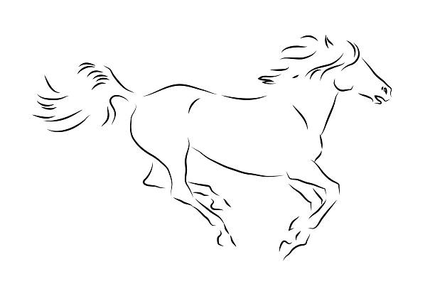 Sketch of silhouette of galloping horse vector art illustration
