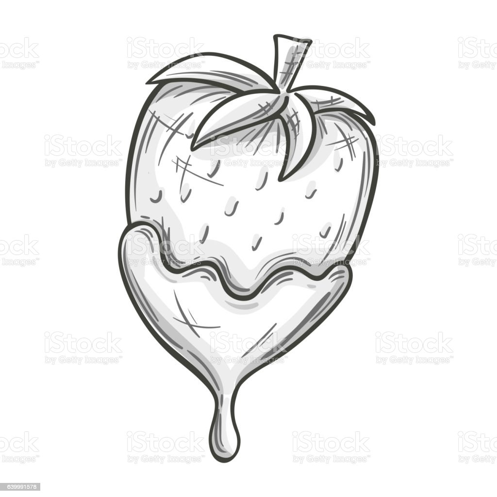 Sketch of strawberry in chocolate vector art illustration
