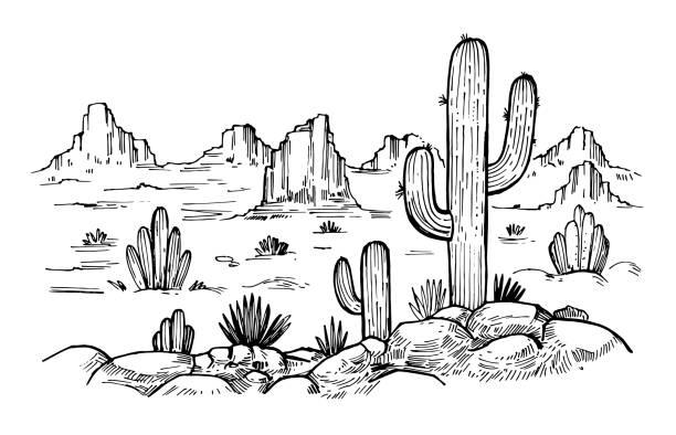skizze der wüste amerikas mit kakteen. prärielandschaft. hand gezeichnete vektor-illustration - wüste stock-grafiken, -clipart, -cartoons und -symbole
