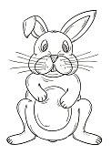 sketch of the rabbit