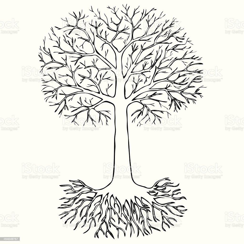 Vetores De Desenho De árvore Com Raízes E Mais Imagens De