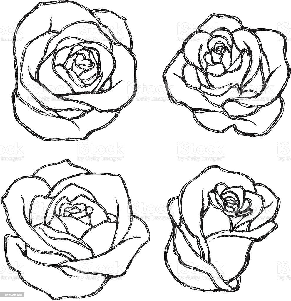 Simple Rose Tattoo Outline: Sketch Rose Flower Set Stock Illustration