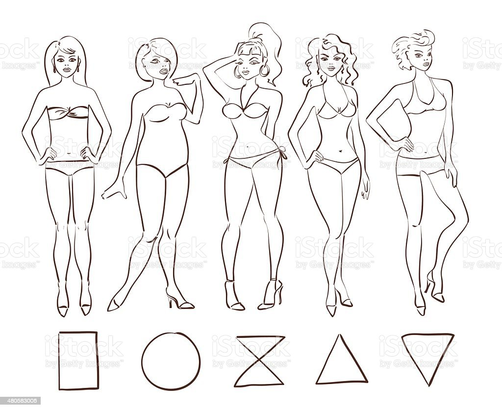 Sketch Set Of Isolated Female Body Shape Types Stock Vector Art