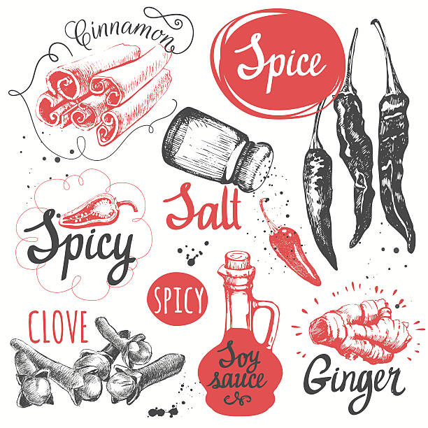 Sketch set with soy sauce, cloves, salt, pepper, cinnamon. Vector illustration with sketch spice. Funny labels of fresh vectorings and spices.  salt stock illustrations