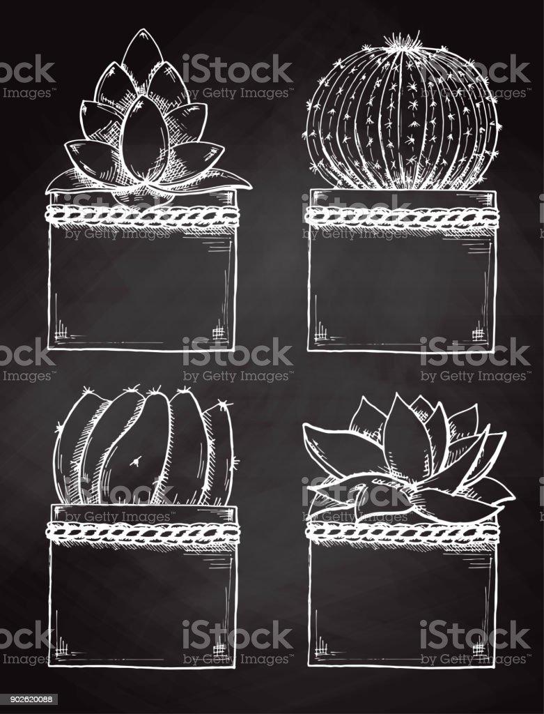 Croquis De Plantes Succulentes En Pot Isolé Sur Le Tableau