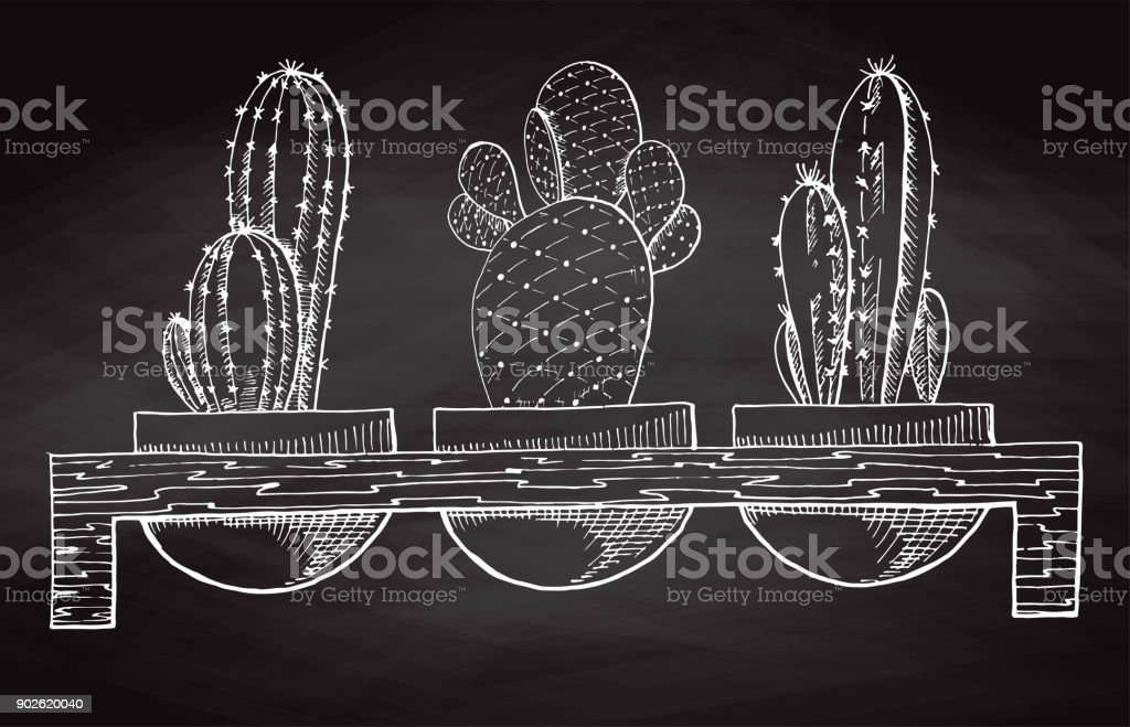 Sketch Three Succulents In Pots On A Wooden Stand Isolated On The Chalkboard Vector Illustration Stock Illustration Download Image Now Istock