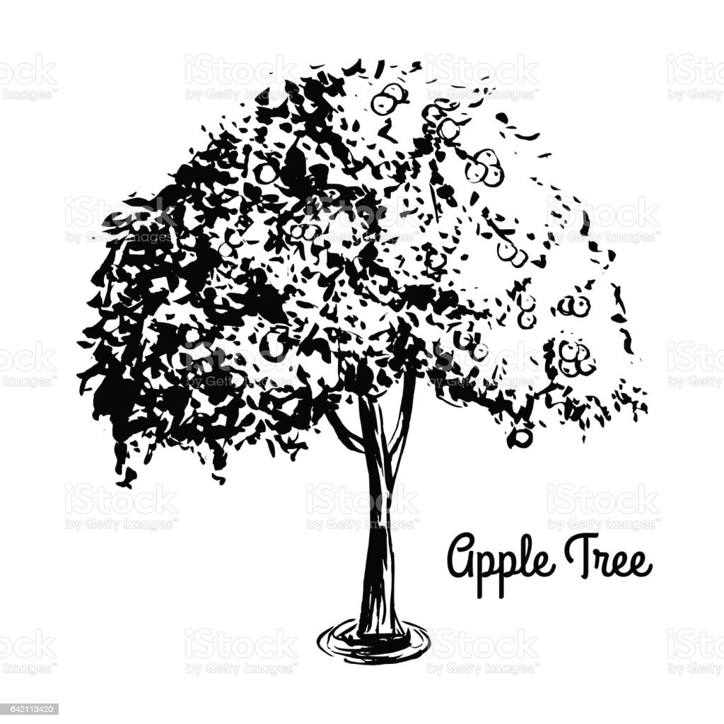 Sketch tree illustration vector art illustration
