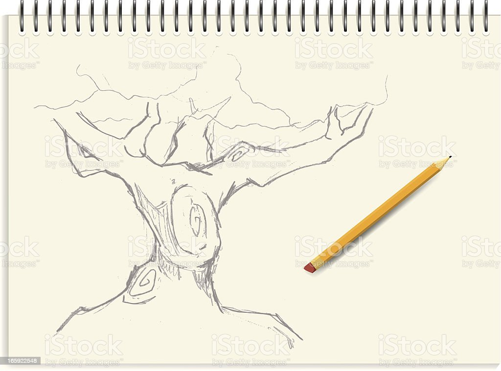 Sketch - Tree vector art illustration