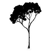 Sketched monochrome tree silhouette vector line art isolated.
