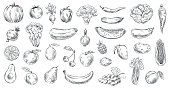 Sketched vegetables and fruits. Hand drawn organic food, engraving vegetable and fruit sketch. Healthy fresh vegetarian or vegan foods doodle. Vector illustration isolated symbols set