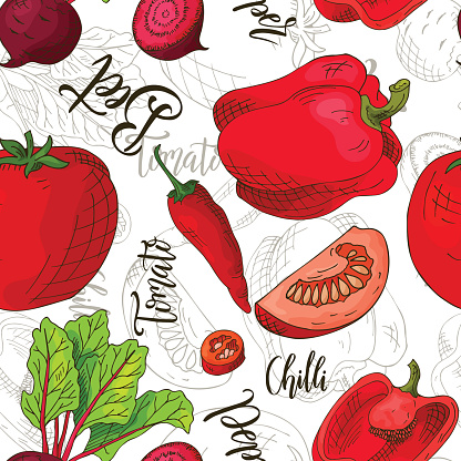Sketched vegetables background. Vector seamless pattern with beet and chilli and tomato and pepper. Hand drawn illustration