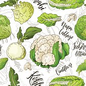 Sketched vegetables background. Vector seamless pattern with kohlrabi and napa cabbage and couliflower and lettuce. Hand drawn illustration.