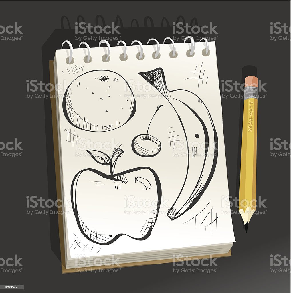 Sketchpad - Fruit vector art illustration
