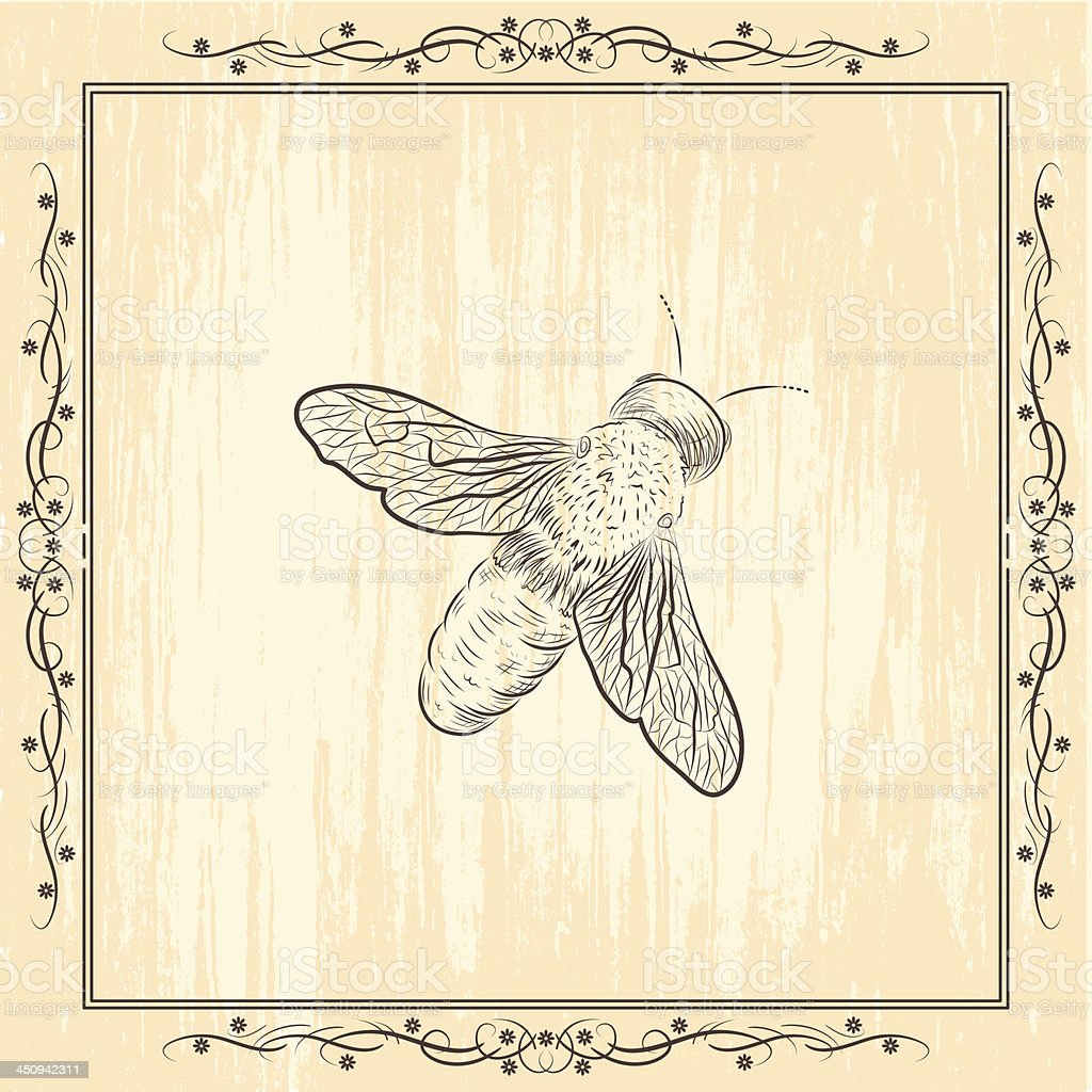 Skizzenhafte Biene Zeichnen Auf Grunge Hintergrund Stock Vektor Art
