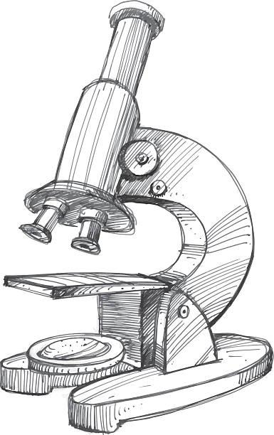 Sketchy illustration of microscope vector art illustration