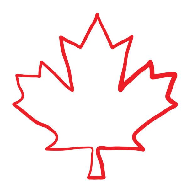 ilustraciones, imágenes clip art, dibujos animados e iconos de stock de diseño incompleto de la hoja - bandera de canadá