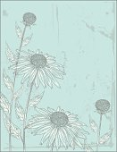 Hand drawn style Coneflower or Echinacea. Flowers and grunge are on separate layers. Comes with a jpeg and png