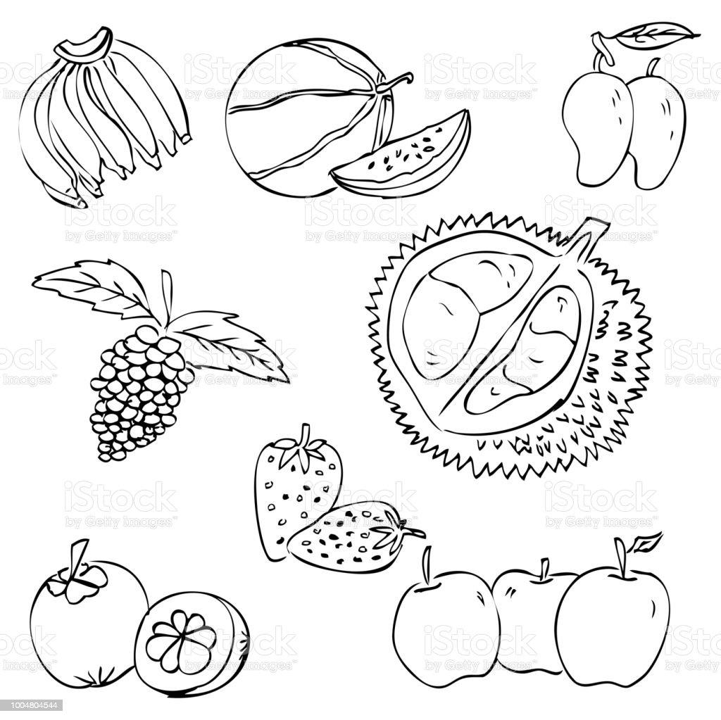 La fresa es fruta tropical