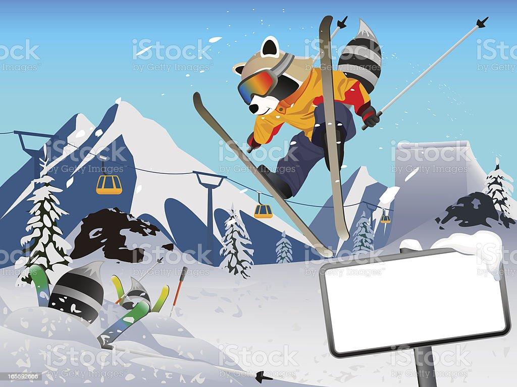 Skiing Raccoon cartoon character royalty-free stock vector art