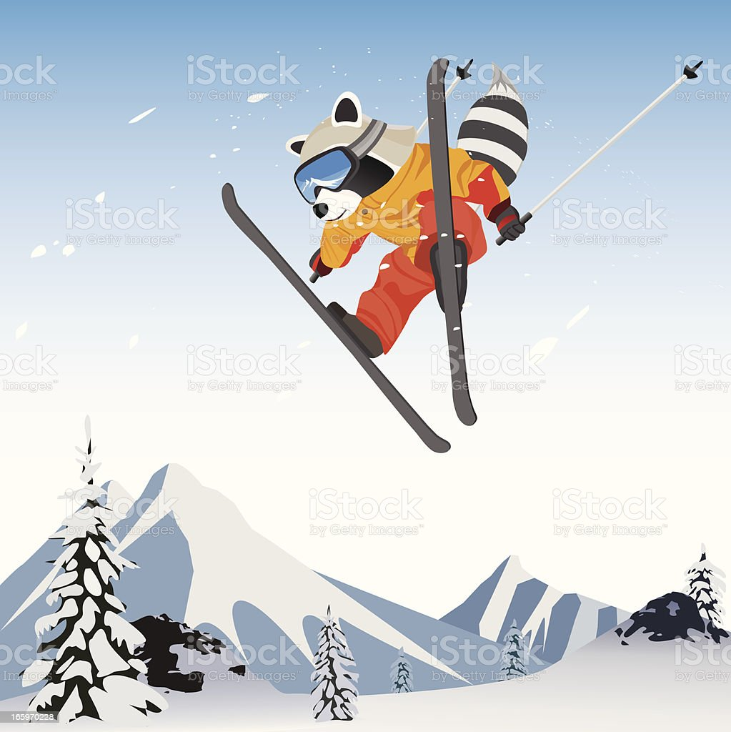 Skiing Raccoon character cartoon royalty-free stock vector art